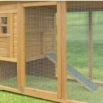Chicken Coops For Sale – Buy A Readymade Coop