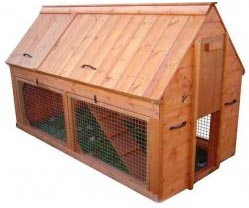 How To Build A Chicken Coop review