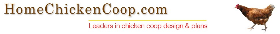 Home Chicken Coop - Expert Information & Advice
