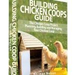 Building Chicken Coops Guide Reviewed
