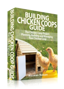 building chicken coops guide